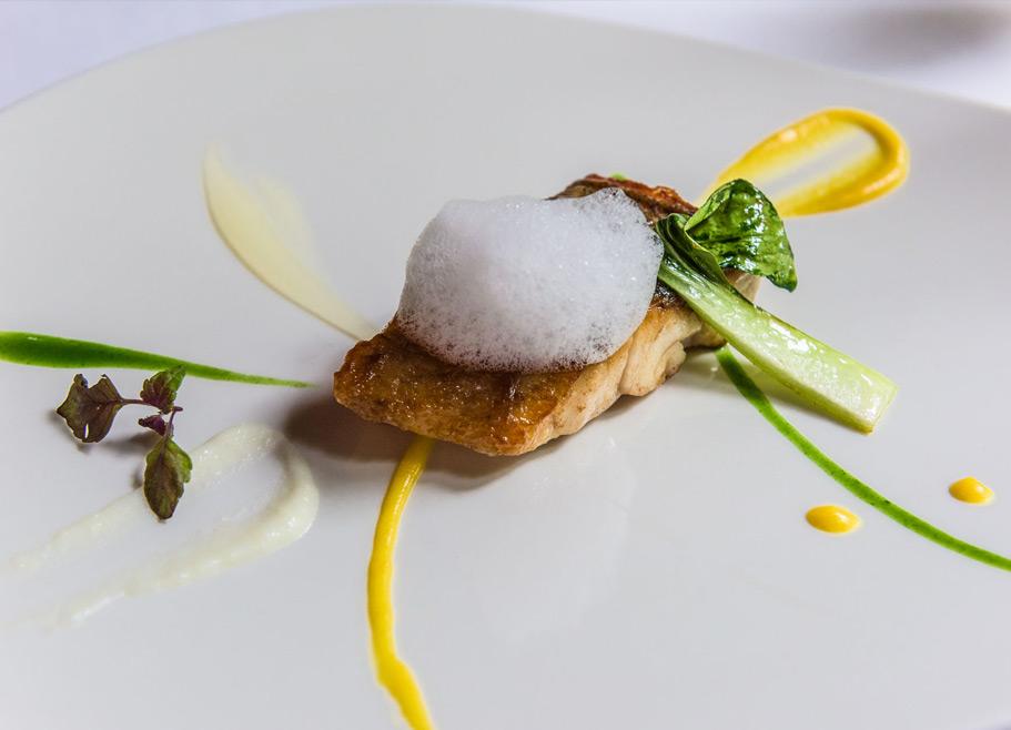hotel-villa-retiro-restaurante-estrella-michelin-menu-degustacion-ebre-xerta-jorndas maridaje villa retiro